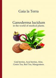 Libro  Ganoderma lucidum  10 Pz. English